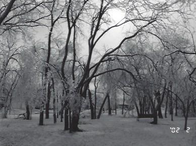 Ice Storm_1