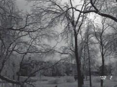 Ice Storm_2
