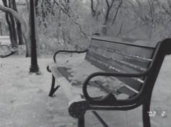 Ice Storm_5